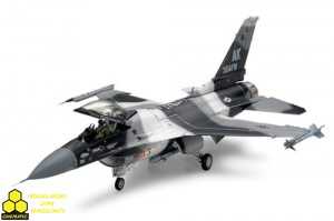 Tamiya 61106 F-16C/N Aggressor/Adversary